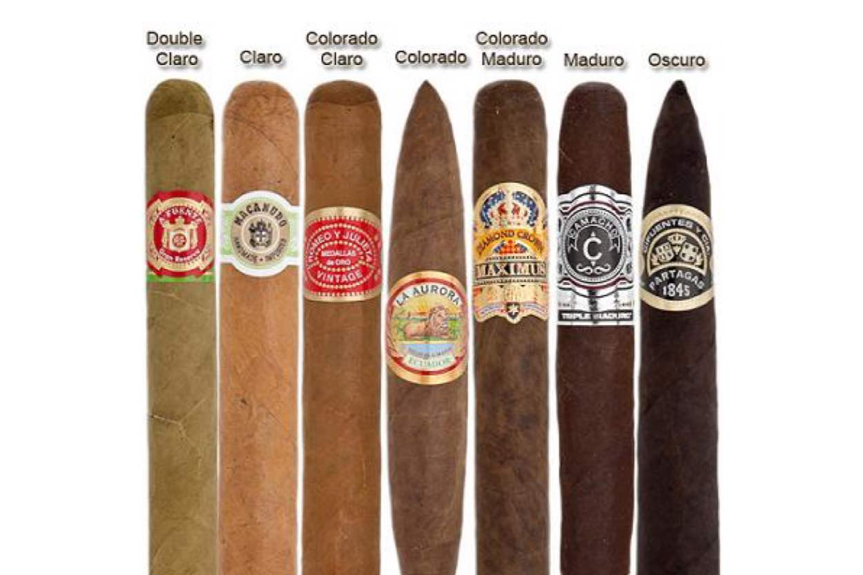 Cigar Village HQ Cigars 101